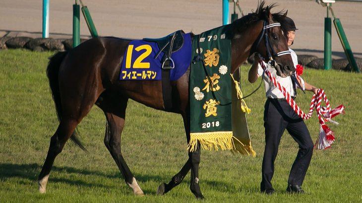 【競馬】フィエールマン 3-1-0-0 菊花賞馬←これ