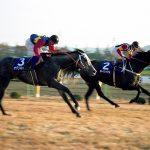 【競馬】日本に来た中で最強の外国馬と言えば?