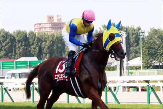 【競馬】【悲報】武豊さん…エアオーナーと完全に絶縁へ 「さようならアイドリームドアドリーム」