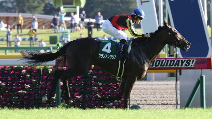 【競馬】重賞Vのグランアレグリアが朝日杯FS