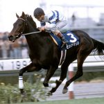 【競馬】ヒシアマゾンって本当に最強牝馬候補になるほど強かったの?