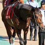 【競馬】キセキは福永祐一騎手でジャパンカップへ