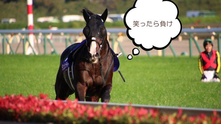 【競馬・天皇賞秋】戸崎wwwwwwwwwww【笑ったら負け】