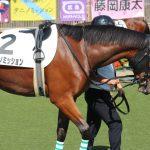 【競馬】【ウオッカの子】タニノミッション強すぎワロタw【動画有】