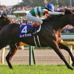 【競馬】レイデオロ、次走はルメールで有馬記念が有力