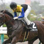 【競馬】ダービー馬ワグネリアンは有馬記念へ直行