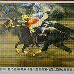 【競馬】門別競馬さん、確定の6分後には誤審に気付いていた【誤審事件】