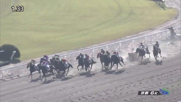 【競馬】和田&幸が負傷 秋山に2日間の騎乗停止処分【3頭落馬】