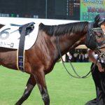 【競馬】エポカドーロが有馬記念を見送り