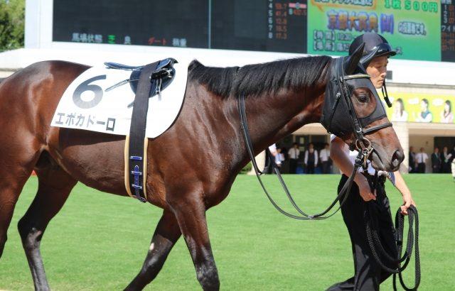 【競馬・中山記念】皐月賞馬エポカドーロ、2月24日の中山記念で復帰