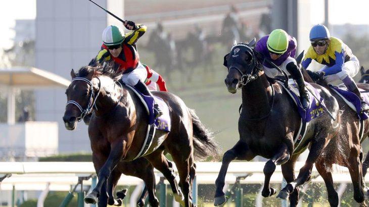 【競馬】フィエールマン有馬記念回避! 【菊花賞馬】