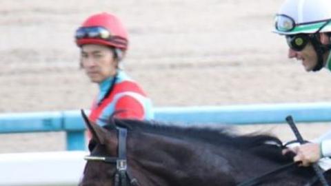 【競馬・ジャパンC】シュヴァルグランはCデムーロ