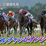 【競馬】11/18(日) 第35回 マイルチャンピオンシップ(GⅠ) part3