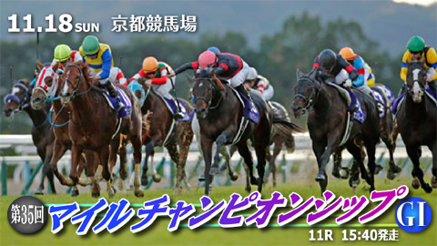 【競馬】11/18(日) 第35回 マイルチャンピオンシップ(GⅠ) part4