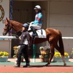 【競馬】【悲報】シルクレーシングの馬主さん達、ほぼ完璧に乗った藤田菜七子まで批判