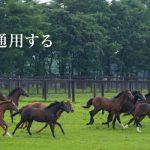 【競馬】ノーザンF、今年現在迄全ての芝GIを制圧【最強】