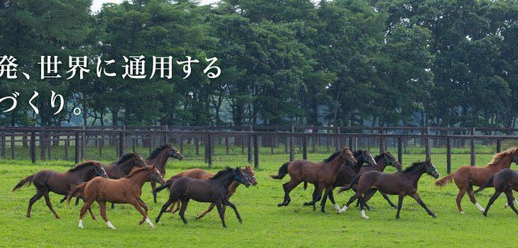 【競馬】【前人未到の偉業】ノーザンF、年間G1 12勝&秋G16連勝を達成!!!