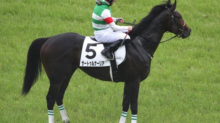 【競馬】サートゥルナーリアはホープフルSへ【鞍上未定】