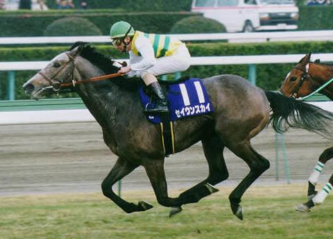 【競馬】セイウンスカイって今現れたらものすごい人気になりそうだよな【1998年】