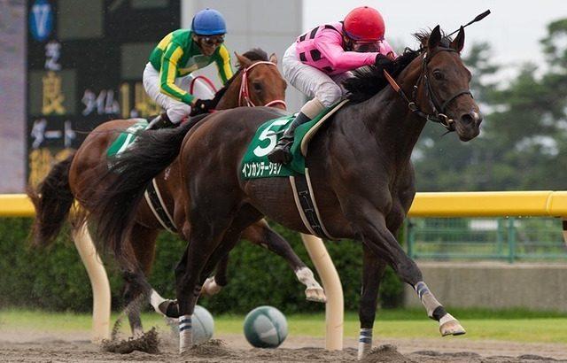 【競馬】インカンテーション引退【種牡馬に】