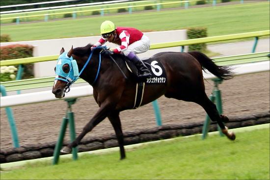 【競馬】【徹底討論】改めて問う、オジュウチョウサンは有馬記念で通用するか?