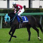 【競馬】オジュウチョウサン予定通り宝塚記念へ、鞍上は石神騎手