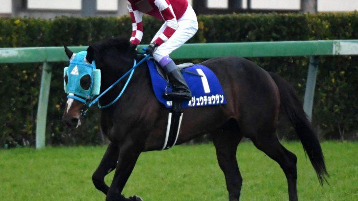 【競馬】【オジュウ問題勃発】和田調教師「障害に戻す可能性も」、馬主「平地!春天!」