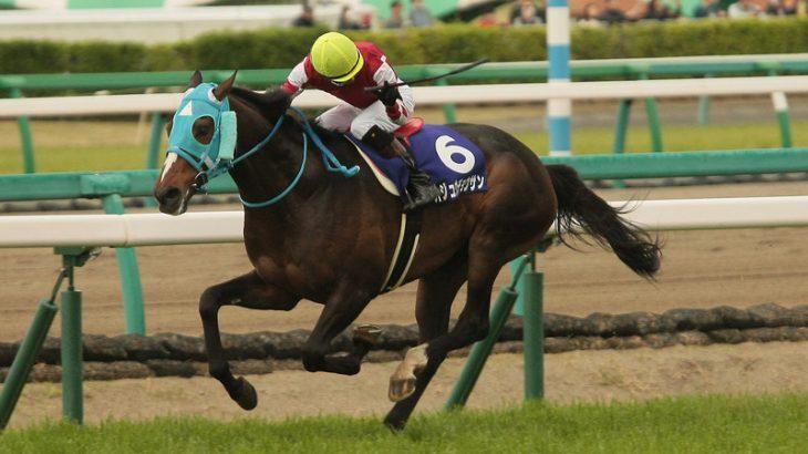 【競馬・有馬記念】石神「オジュウチョウサンほぼ100%に近い仕上がり。奇跡を起こしてくれそう…」