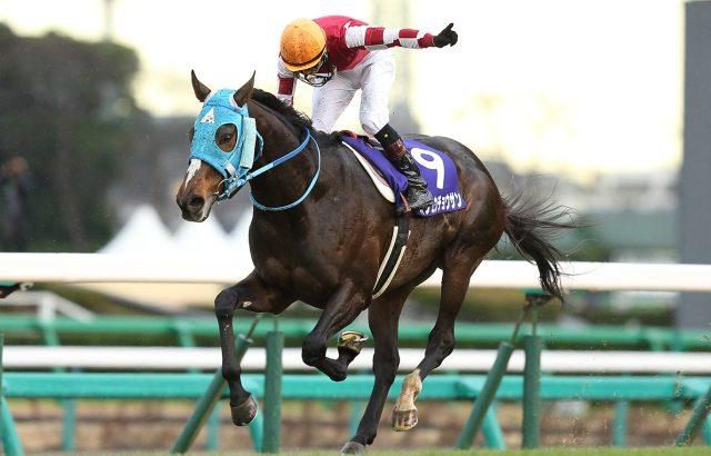 【競馬・天皇賞春】オジュウチョウサン、来年の天皇賞・春挑戦も視野、オーナーは「武豊もこの馬を」