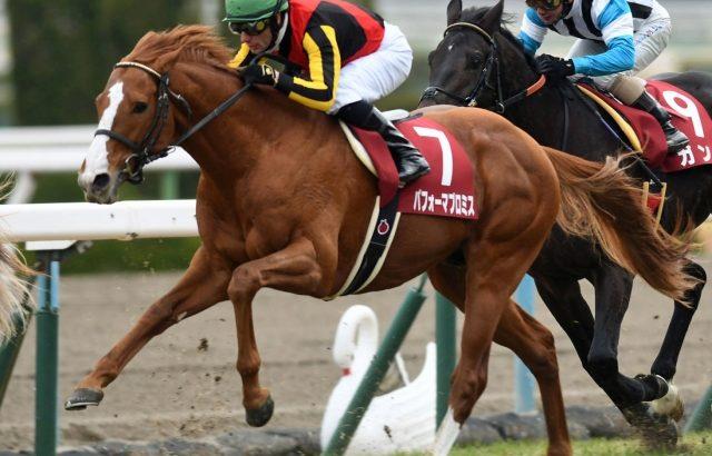 【競馬・有馬記念】パフォーマプロミスってそんなに強いの?有馬記念勝つ可能性は?