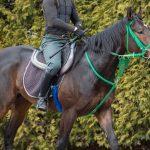 【競馬・ホープフルS】神馬サートゥルナーリア馬なりで11秒5【レース動画有】