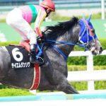 【競馬】テイエムジンソク引退【種牡馬入り】
