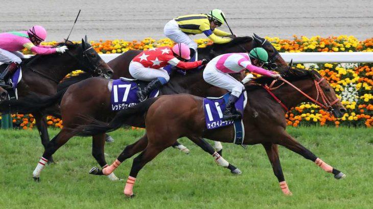 【競馬・ディープ産駒】NHKマイルカップ勝ち馬のケイアイノーテックがダートに挑戦