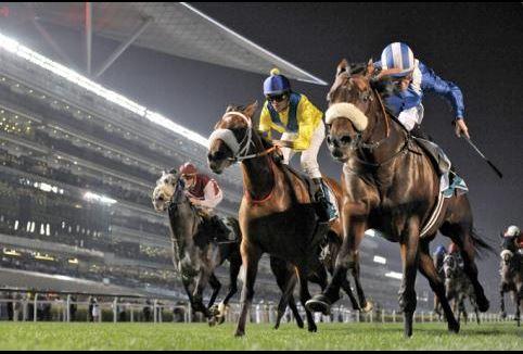 【競馬・ドバイ】マテラスカイが選出!シュヴァル、ヴィブロス、ディアドラも【武豊か外人】