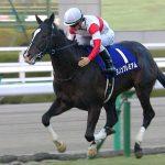 【競馬】【悲報】ダノンプレミアム、大阪杯回避して安田記念へ