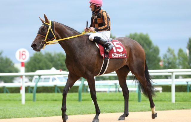 【競馬】17年エリザベス女王杯Vモズカッチャン屈腱炎で引退【繁殖へ】