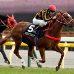 【競馬】モズアスコット、坂井瑠星で安田記念へ 主戦のルメールはアーモンドアイ騎乗