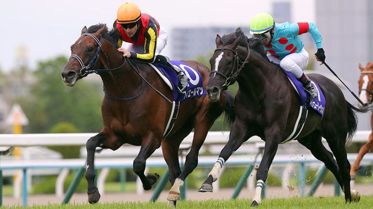 【競馬】フィエールマン、宝塚記念は出ないってよ