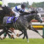 【競馬】ノームコア骨折